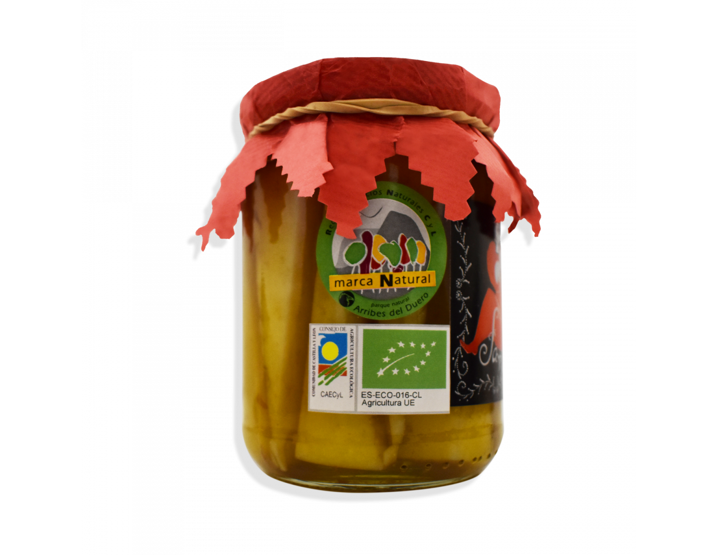 Tarro de queso en aceite